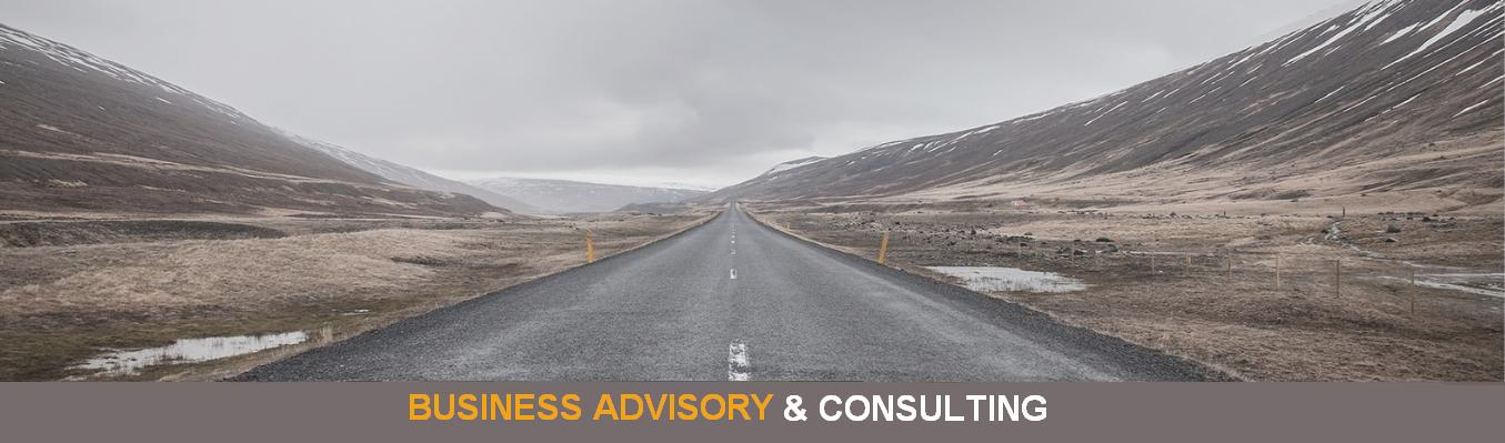 Business Advisory and Consulting